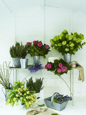 flowerbuckets_natowelton1