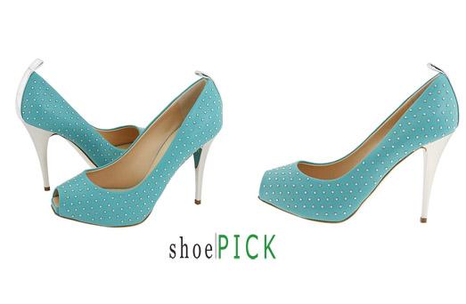 Shoepick