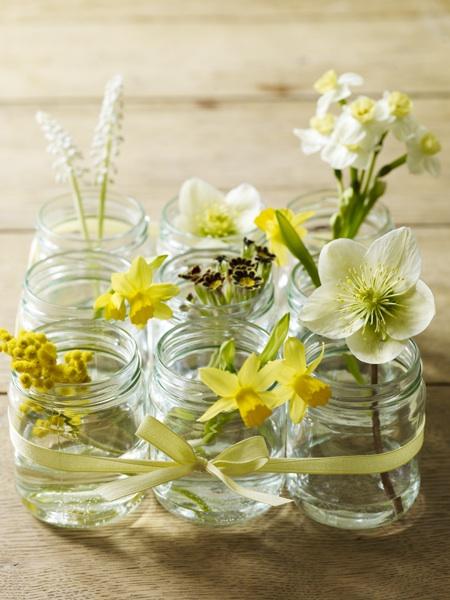 daffodil_masonjar_pollywreford