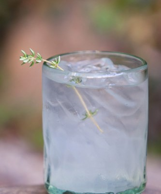 On the Rocks: Thyme for Gin!