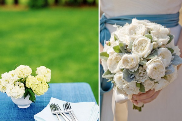 Color Palette: French Blue + White